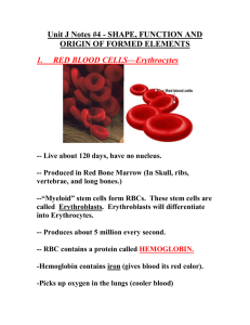 Unit J Notes #4 - SHAPE, FUNCTION AND ORIGIN OF BLOOD CELLS