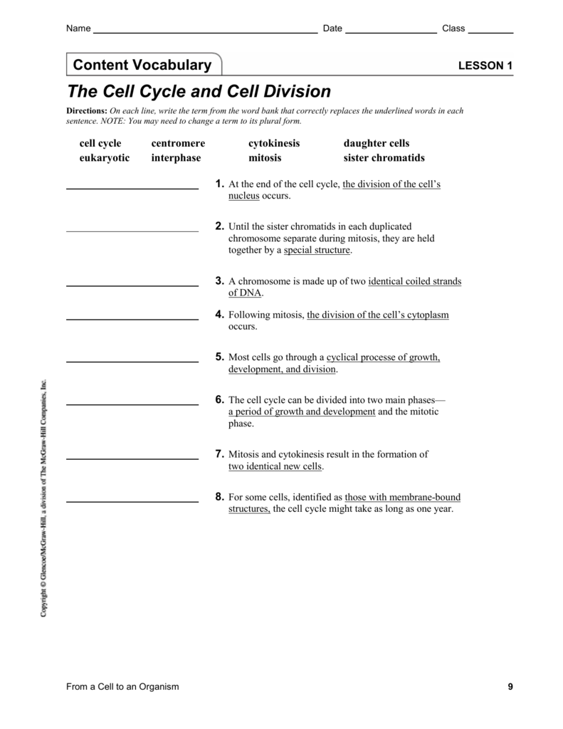 worksheet Cell Growth And Division Worksheet lesson 1 the cell cycle and division
