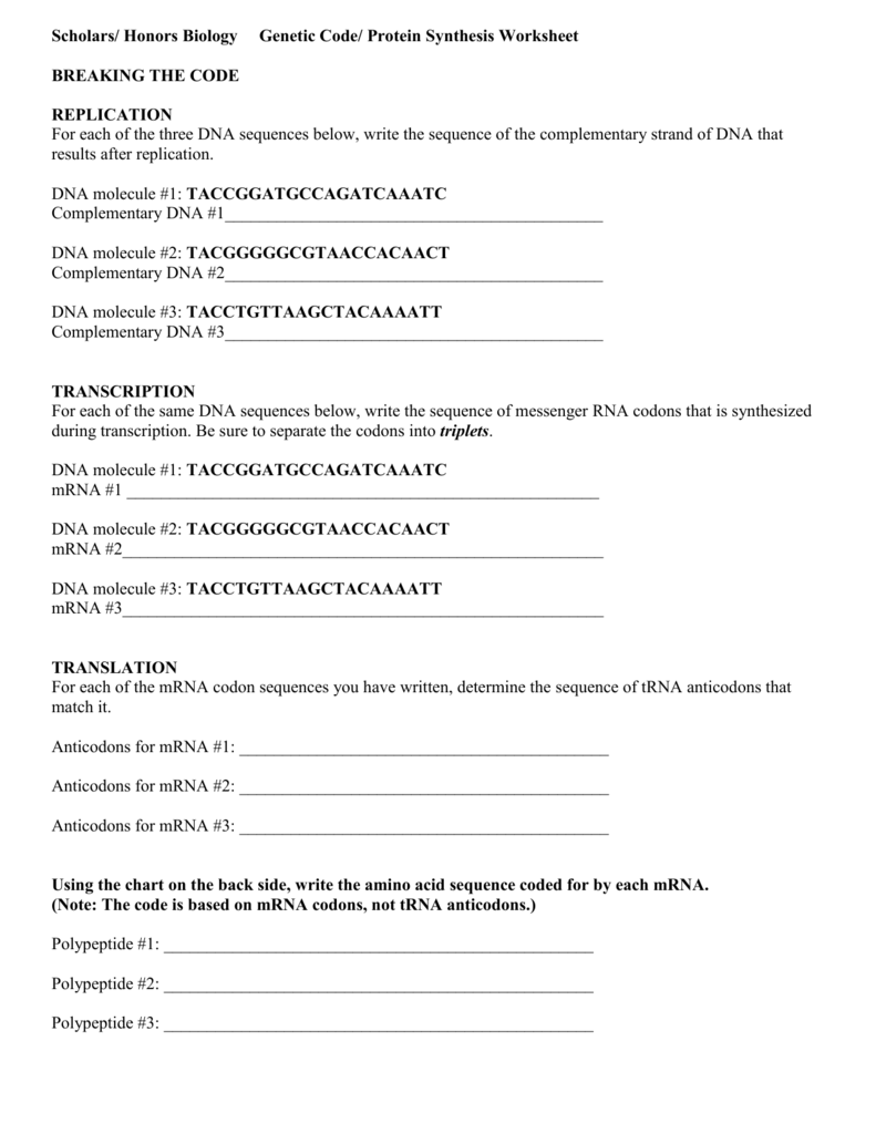 worksheet Genetic Code Worksheet scholars honors biology protein synthesis worksheet