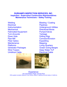DISI Brochure - Durham's Inspection Services, Inc.