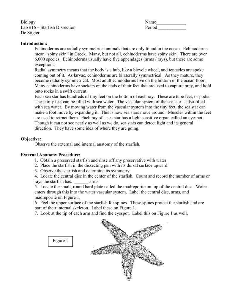 Biology - Central Lyon CSD