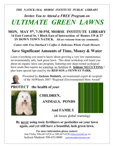 ultimate green lawns
