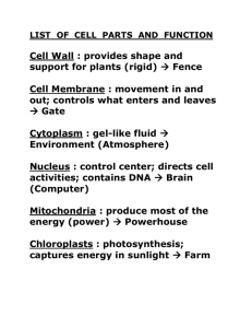 LIST OF CELL PARTS AND FUNCTION with CHA4