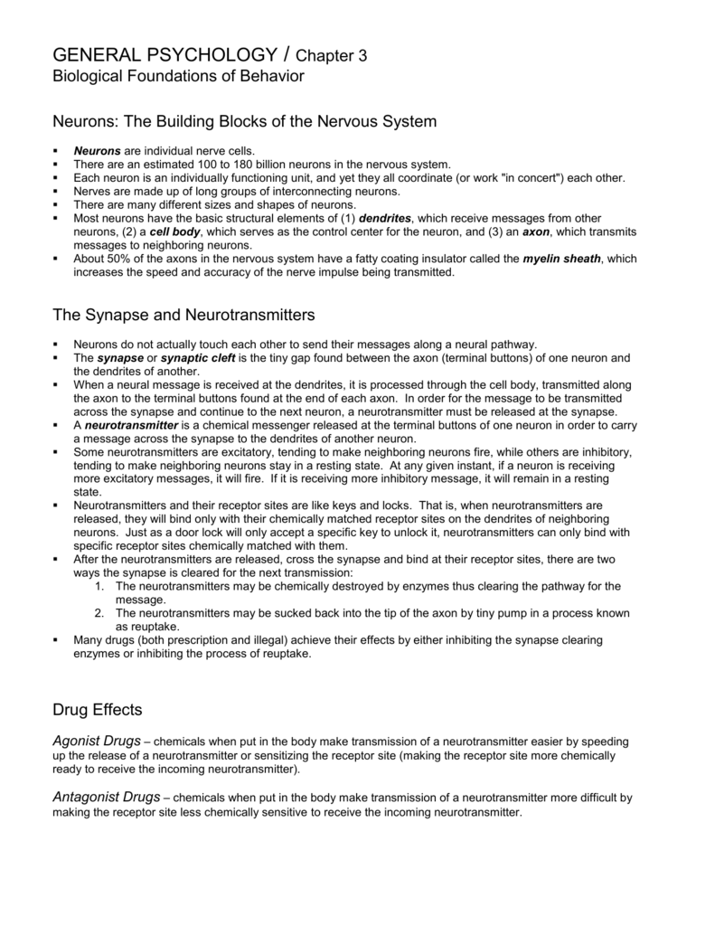 Chapter 3 Class Notes