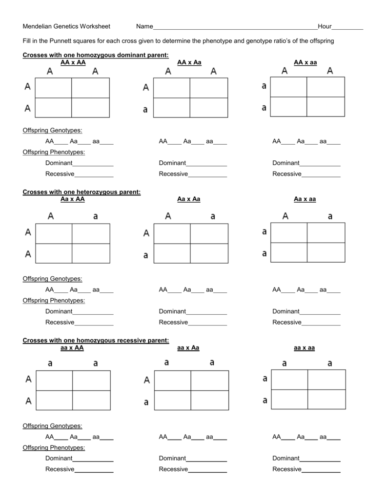 Workbooks Mendelian Genetics Worksheets Free Printable