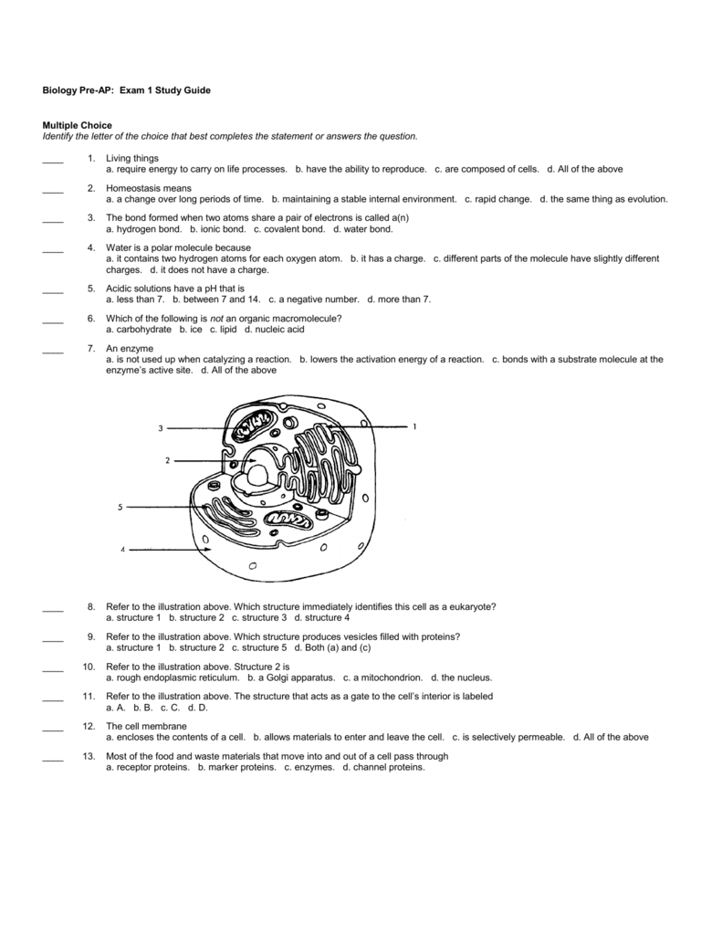 2c5a072a2 Biology Pre-AP  Exam 1 Study Guide Multiple Choice Identify the letter of  the choice that best completes the statement or answers the question.       1.