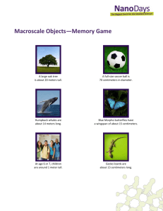 Exploring Size Memory Game