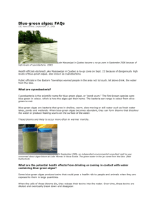 Blue-green algae: FAQs - Clear Lake Property Owners Association