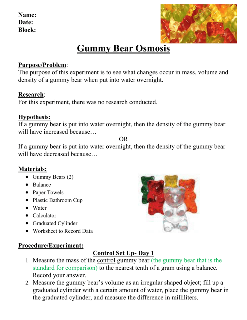 worksheet Gummy Bear Experiment Worksheet gummy bear lab write up