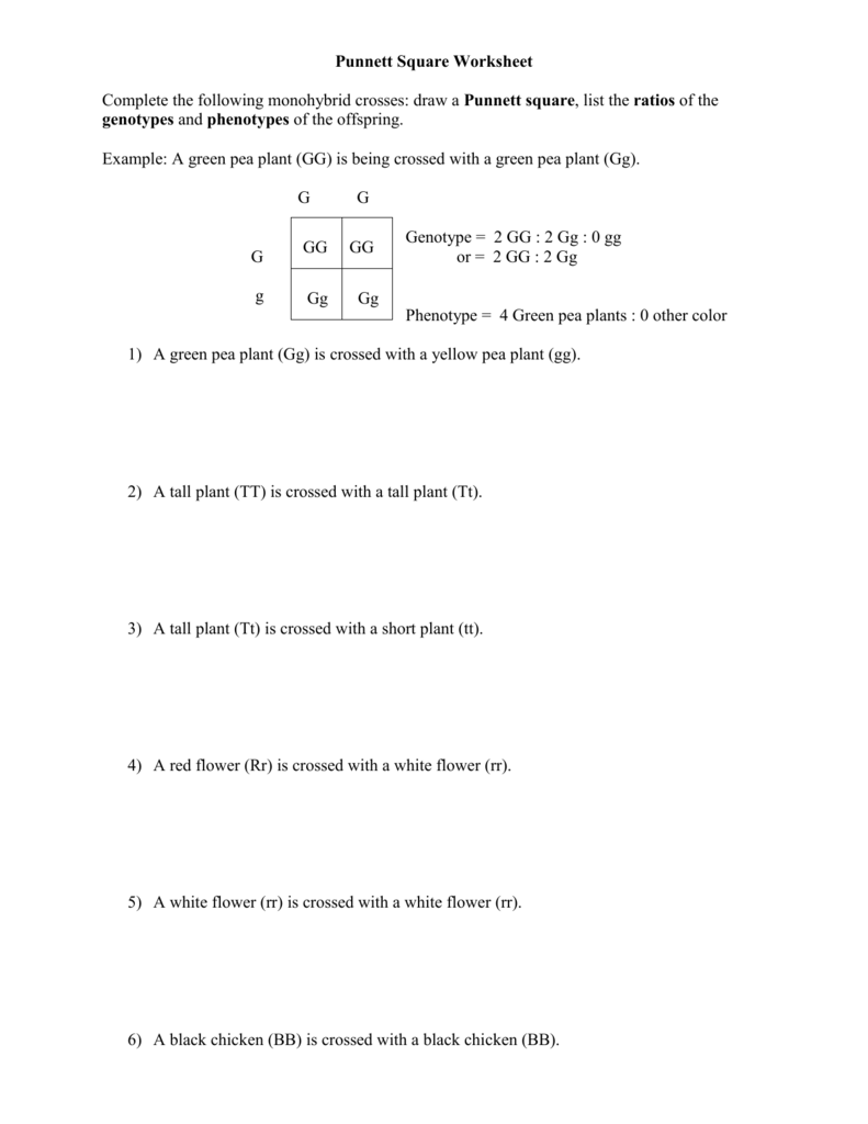 All Grade Worksheets Punnett Square Practice Worksheet With – Punnett Square Worksheet Answers