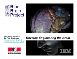 Reverse-Engineering the Brain
