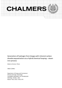 Generation of hydrogen from biogas with inherent carbon dioxide