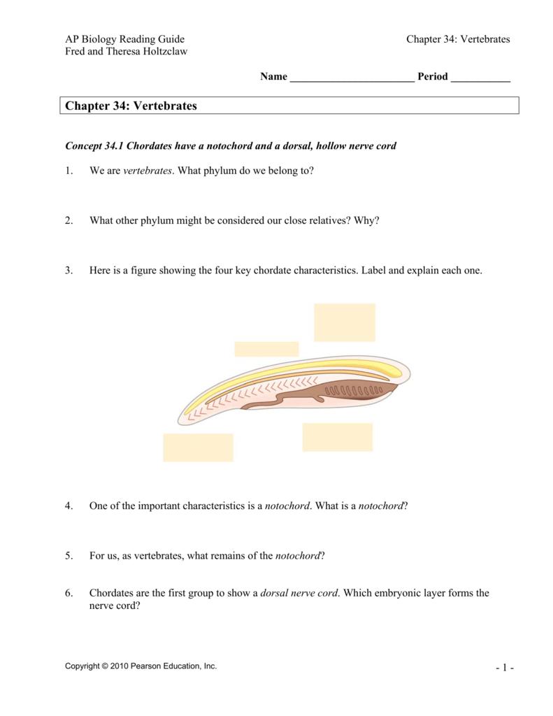 chapter 34 vertebrates rh studylib net High School Biology Homework Help High School Biology Grade 9