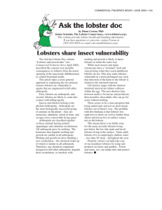 Lobsters share insect vulnerability