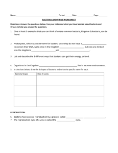 BACTERIA AND VIRUS WORKSHEET 1. Give at least 3 examples