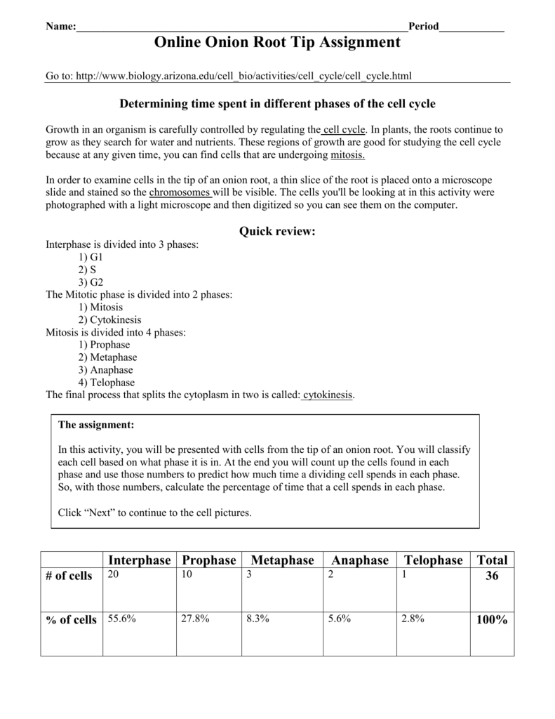 Worksheets Onion Cell Mitosis Worksheet 008667259 1 b5c130658a447737593dc4199d9e657d png