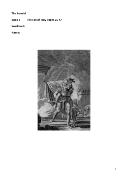 The Aeneid Book 2 The Fall of Troy Pages 25