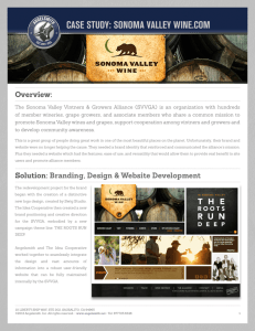 case study: sonoma valley wine.com
