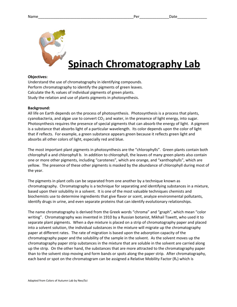 separation of plant pigments by paper chromatography lab report