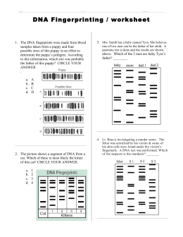 DNA Profiles & Fingerprinting Worksheet