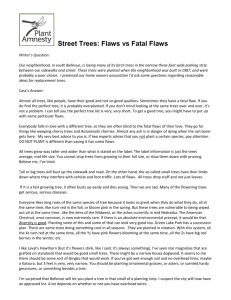 Street Trees: Flaws vs Fatal Flaws