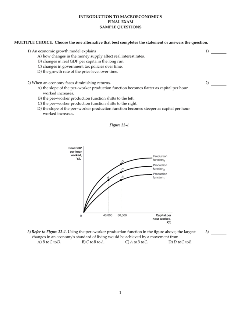 INTRODUCTION TO MACROECONOMICS FINAL EXAM SAMPLE