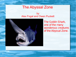 The Abyssal Zone - Alex's nervous system