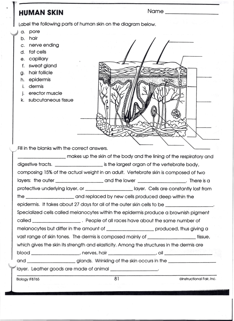 Worksheets Biology Printable Worksheets biology worksheets answers sharebrowse if8765 worksheet delibertad