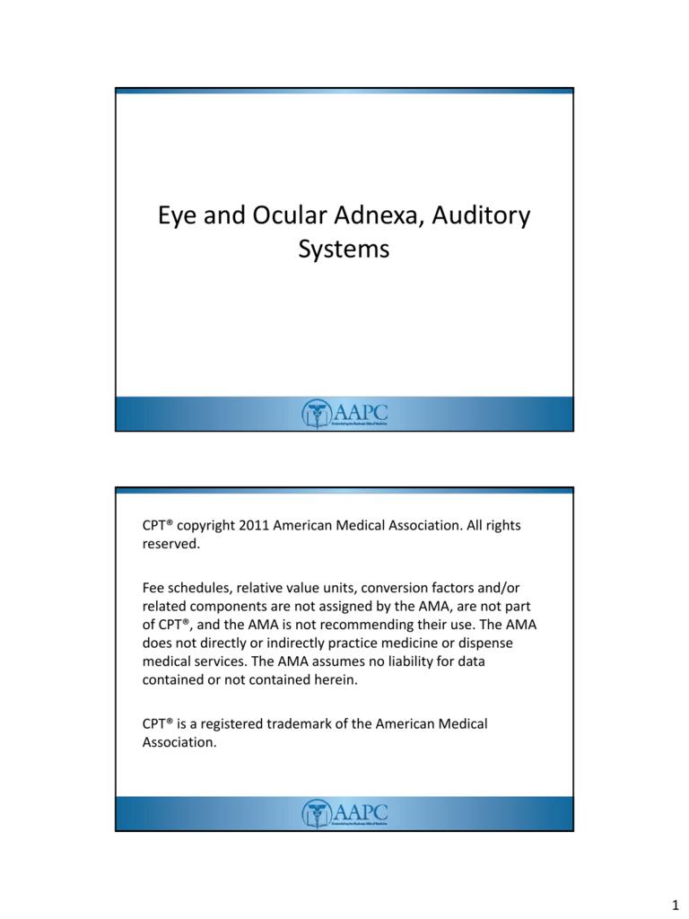 Eye and Ocular Adnexa, Auditory Systems