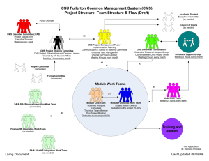 CMS Project Structure--Team Structure and Work Flow