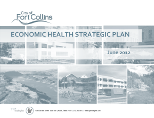 2012 Economic Health Strategic Plan