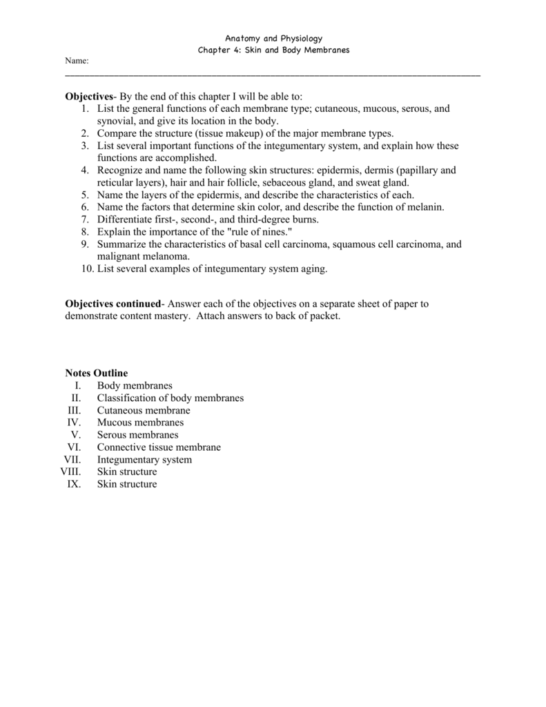 Chapter 4 Packet