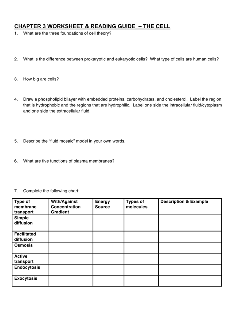 Worksheets Cell Theory Worksheet chapter 3 worksheet reading guide the cell
