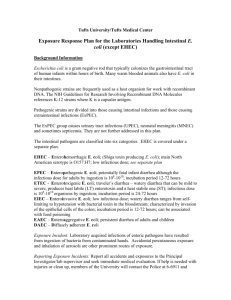 Exposure Response Plan for the Laboratories Handling Intestinal E