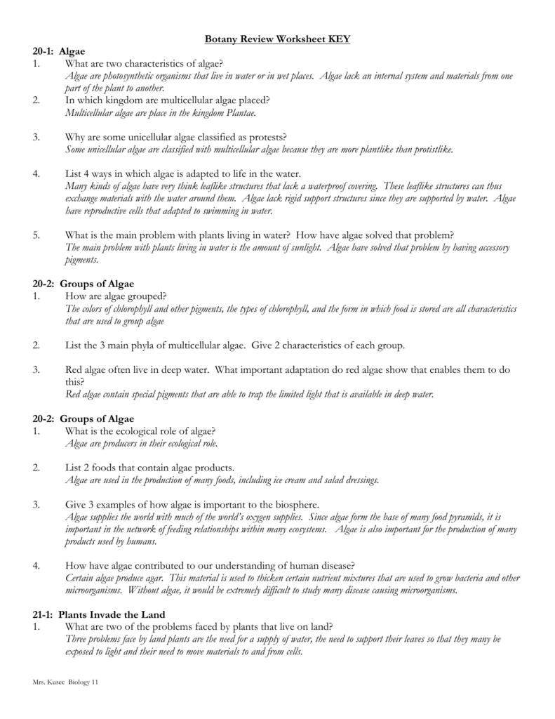 Botany Review Worksheet KEY 20