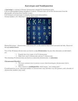 Karyotypes and Nondisjunction