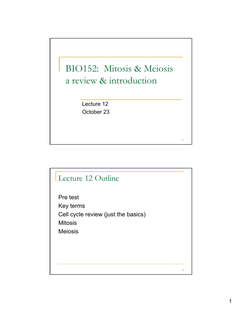 BIO152: Mitosis & Meiosis a review & introduction