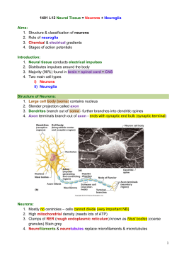 1. Structure & classification of neurons 2. Role of