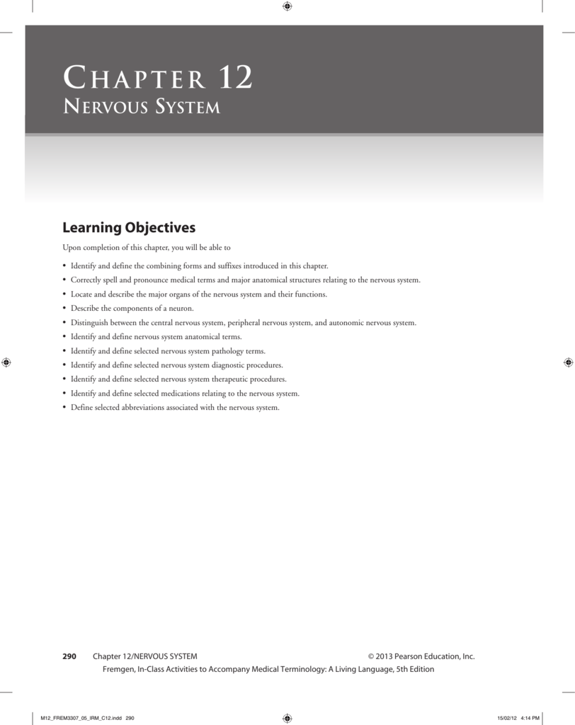 chapter 12 nervous system