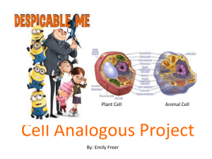 Cell Analogous Project - Watervliet City Schools