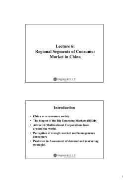 Lecture 6: Regional Segments of Consumer Market in China