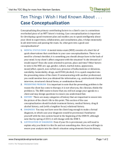 10 Things Case Conceptualization