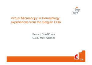 Virtual Microscopy in Hematology: experiences from the Belgian EQA
