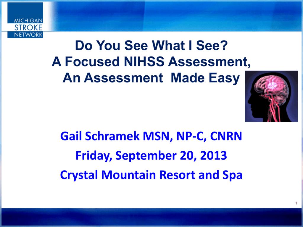 A Focused Nihss Assessment An