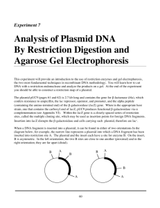 Experiment 7: Analysis of Plasmid DNA by Restriction