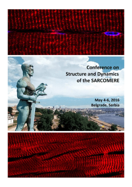 Conference on Structure and Dynamics of the Sarcomere