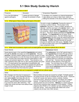 unit three lecture study guide Gross anatomy lecture syllabus 2008 unit #3 – neck and head unit #4 the syllabus is meant to help serve as a guide in this study process.