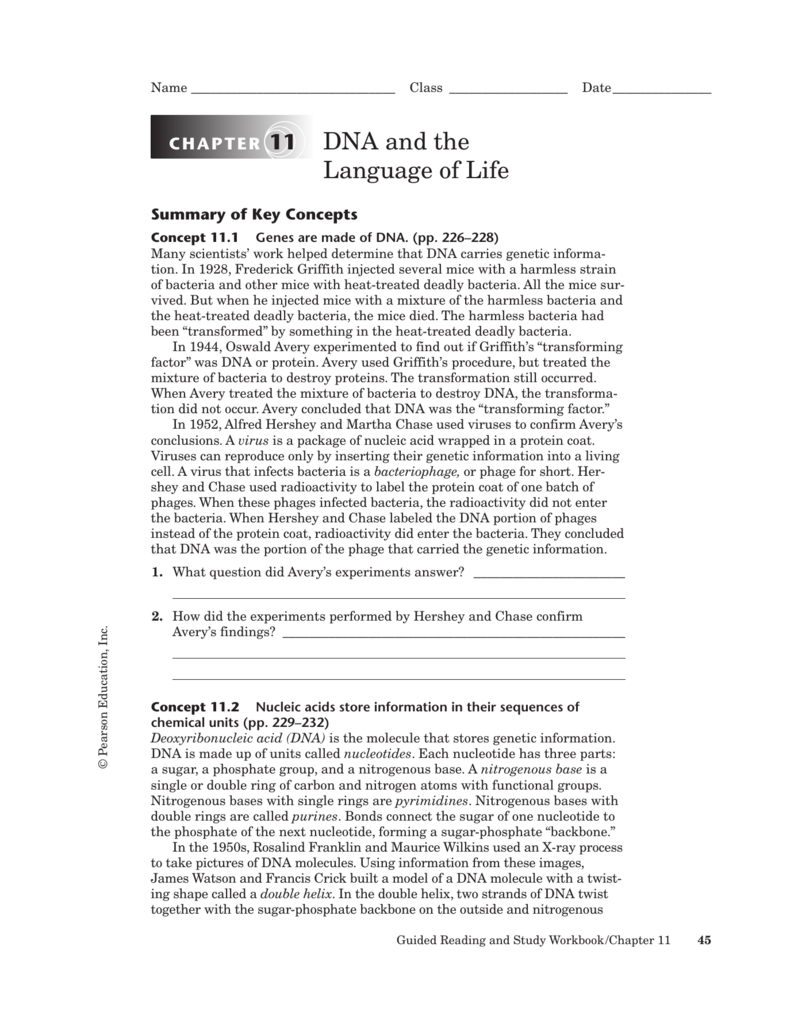 Workbooks » Biology Workbook Answers Chapter 11 - Free Printable ...