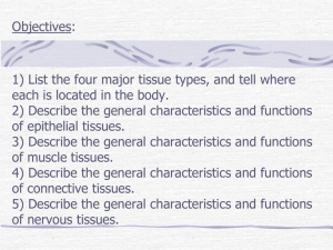 Objectives: 1) List the four major tissue types, and tell where each is