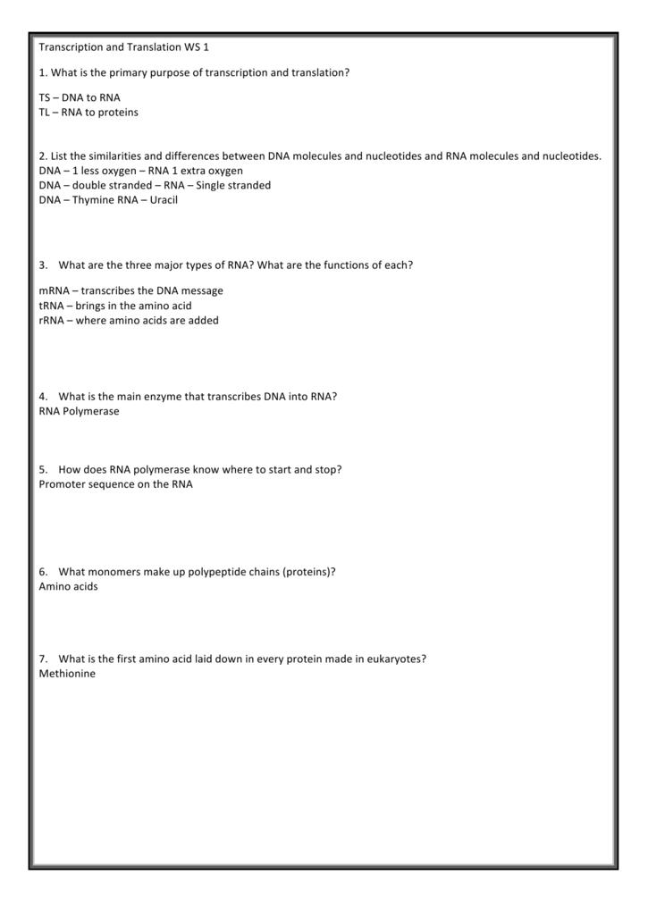 Transcription and Translation WS1 KEY – Transcription Translation Worksheet